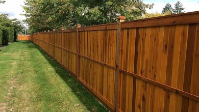 Photo of Cheapest Way to Build a Wood Privacy Fence | DIY 2020