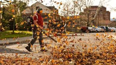 Leaf Blower Techniques | Best Home Gear