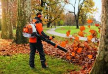 Photo of 10 Best Backpack Leaf Blowers (Reviews For 2020)