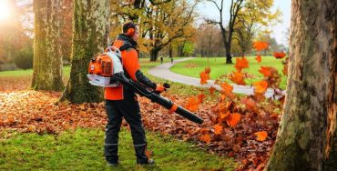 Best Backpack Leaf Blower - Best Home Gear