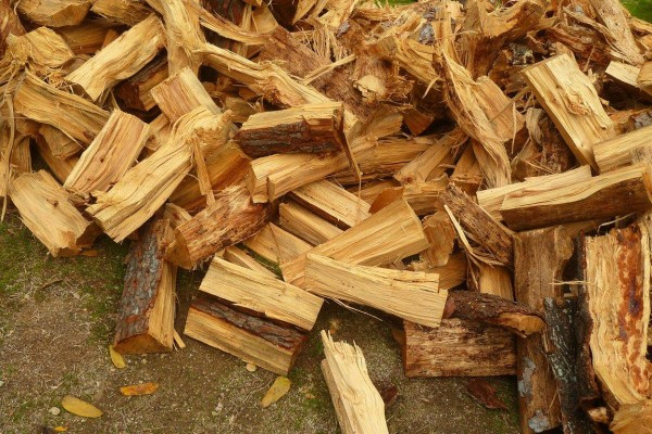 Photo Pine Firewood - Best Home Gear