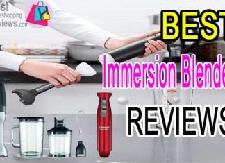 Best immersion blender reviews