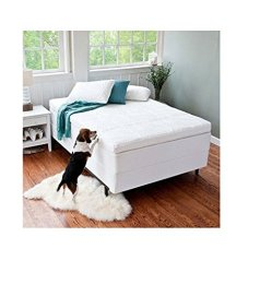 """Night Therapy 4"""" Pressure Relief Memory Foam Topper Review"""