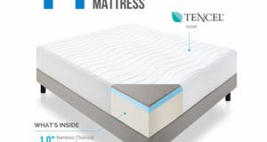 14″ LUCID Plush Memory Foam Mattress Review