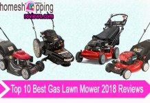 Top 10 Best Gas Lawn Mower 2018 Reviews