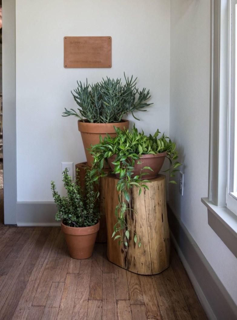 Diy Indoor Plant Display Ideas01