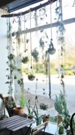Diy Indoor Plant Display Ideas15
