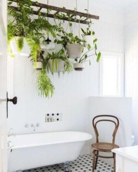 Diy Indoor Plant Display Ideas31