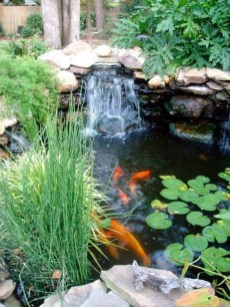 Fabulous Fish Pond Design Ideas For Your Home Yard04