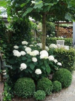 Astonishing Backyard Landscaping Ideas With Flower To Try15