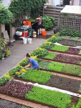 Creative Gardening Design Ideas On A Budget To Try34