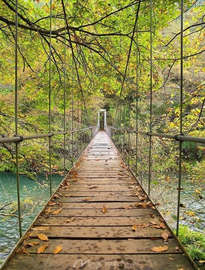 Extraordinary Bridges You Must Cross34