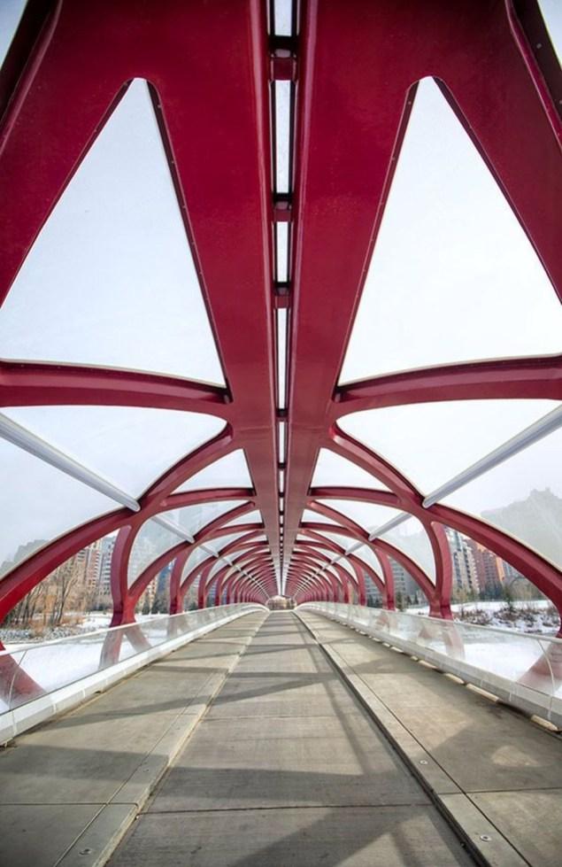 Extraordinary Bridges You Must Cross45
