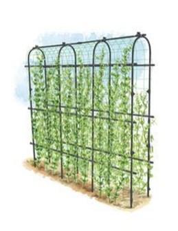 Fantastic Outdoor Vertical Garden Ideas For Small Space38