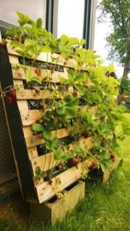 Fantastic Outdoor Vertical Garden Ideas For Small Space41