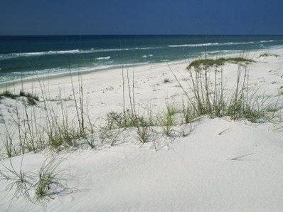 Of The Most Attractive White Sand Beaches You Must See24