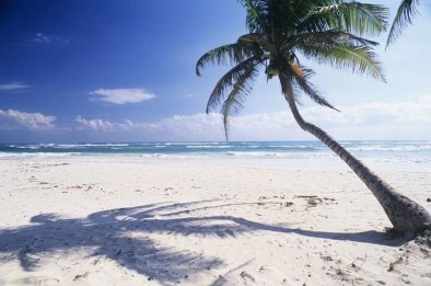 Of The Most Attractive White Sand Beaches You Must See36