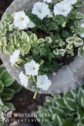 Helpful Tips For Autumn Update Of Your Garden08
