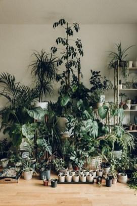 Helpful Tips For Autumn Update Of Your Garden16