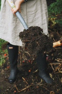 Helpful Tips For Autumn Update Of Your Garden24