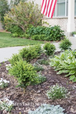 Helpful Tips For Autumn Update Of Your Garden27