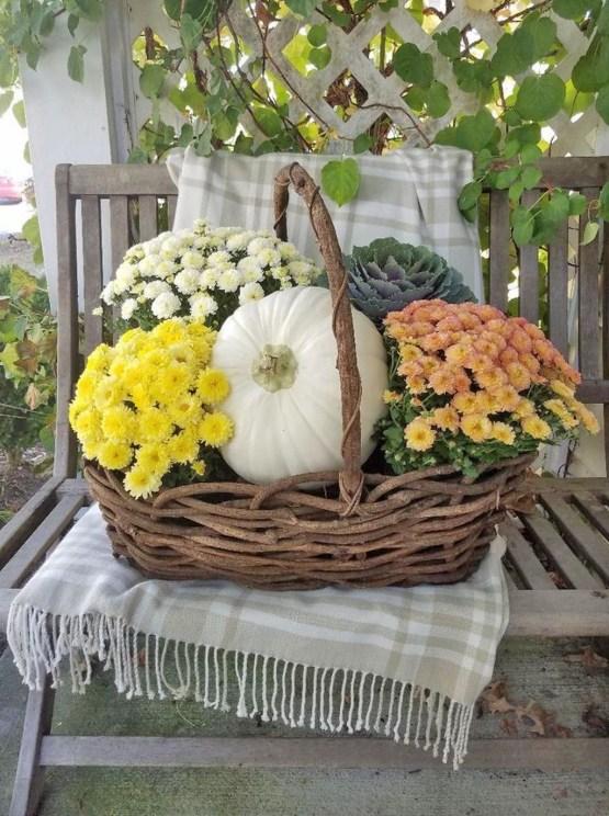 Helpful Tips For Autumn Update Of Your Garden37
