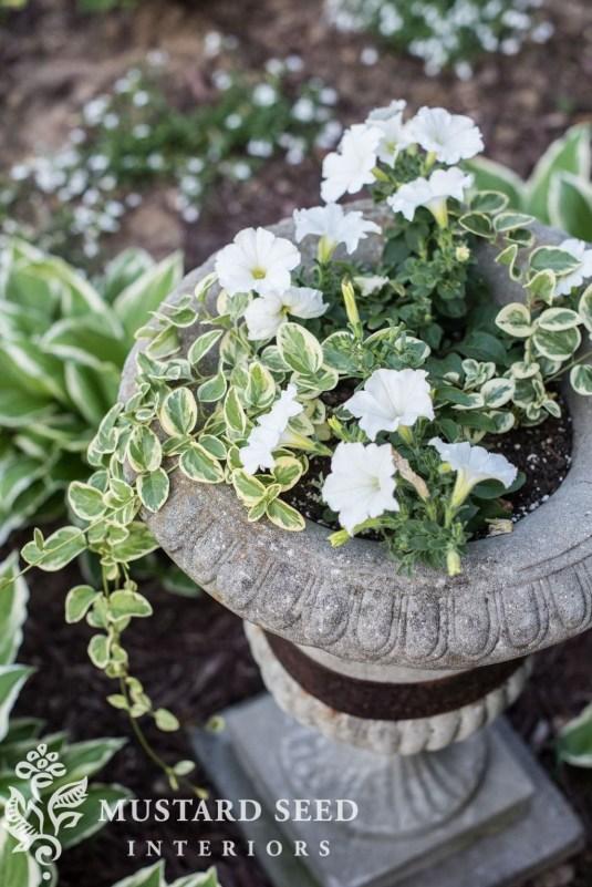 Helpful Tips For Autumn Update Of Your Garden38