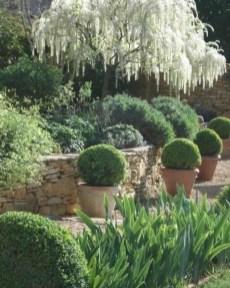 Ideas For Your Garden From The Mediterranean Landscape Design11