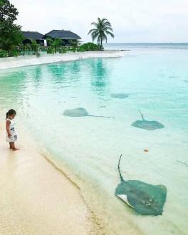 Jumeirah Vittaveli Resort Piece Of Heaven In Maldives26