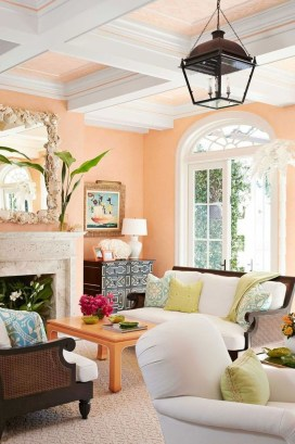 Beautiful And Colourfull Livingroom Ideas36