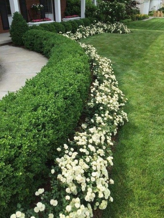 Beautiful Simple Front Yard Landscaping Design Ideas26