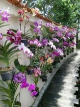 Beautiful Simple Front Yard Landscaping Design Ideas40