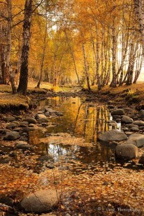 Soothing Autumn Landscape Ideas For This Season05