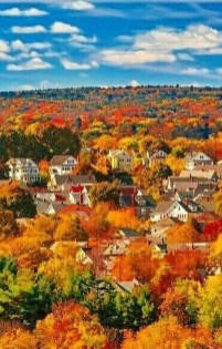 Soothing Autumn Landscape Ideas For This Season20