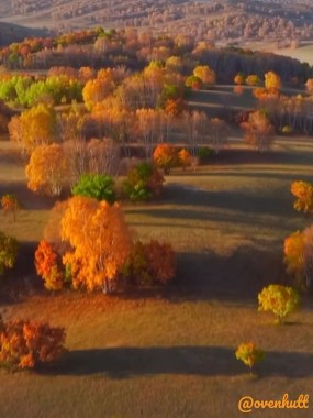 Soothing Autumn Landscape Ideas For This Season25