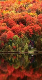 Soothing Autumn Landscape Ideas For This Season29