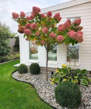 Beautiful Simple Front Yard Landscaping Design Ideas25