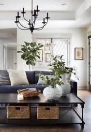 Magnifgicent Traditional Living Room Designs04
