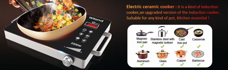 Portable Induction Cooktop Electric