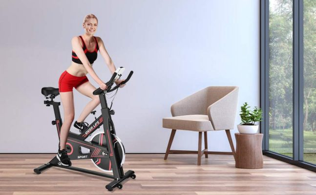 IDEER LIFE Stationary Indoor Workout Cycling Bike