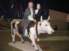 Cow Parade 23
