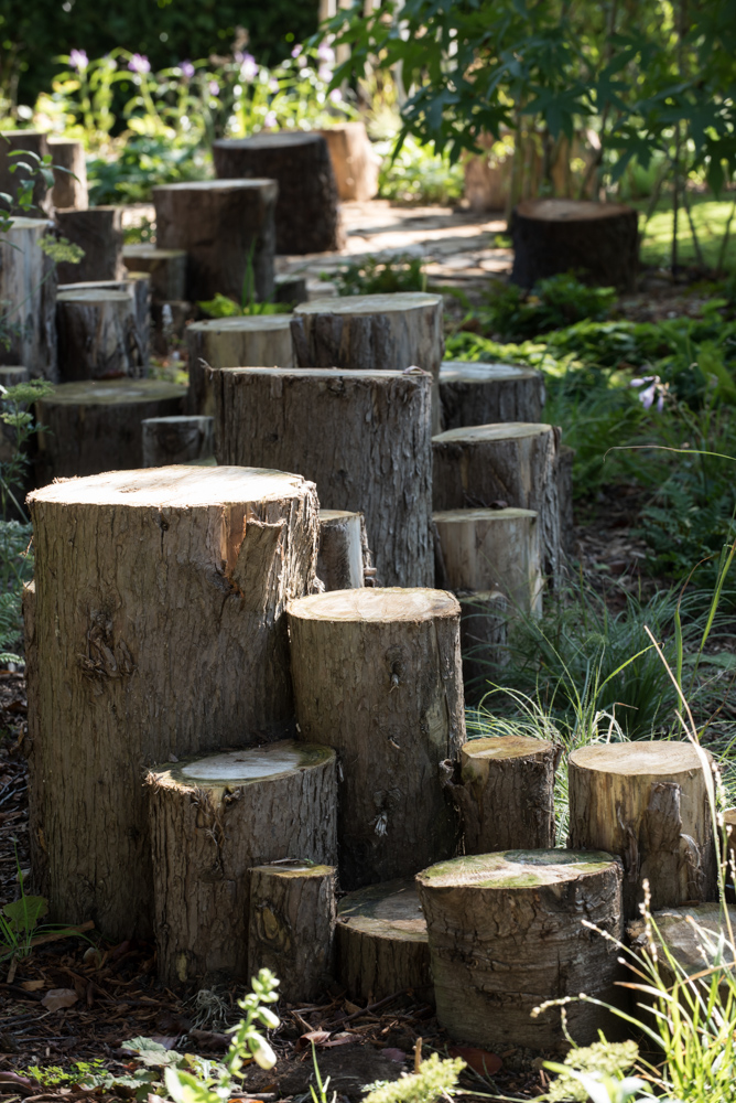 Woodland secret path