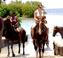 Best Taxi Service Montego Bay