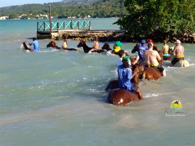 horse-back-montego bay.jpg