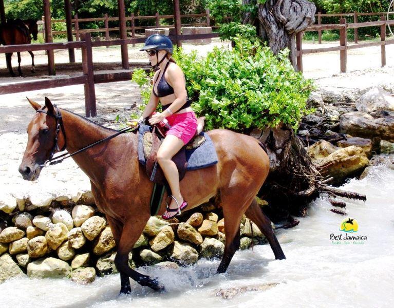 Private Horse Back Ride and Swim