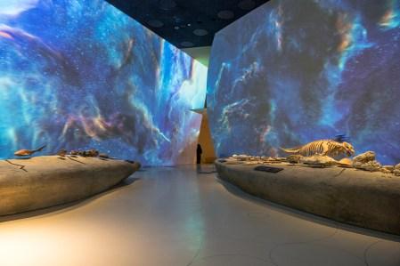 6. NationalMuseumofQatar,Photo Danica O. Kus