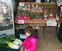 Iijima Farm shop