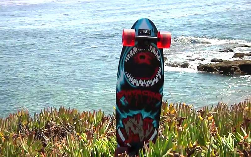 Santa Cruz Skate Land Shark Rasta Sk8 SkateBoards Review
