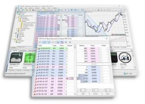 Best Mt5 Brokers for the best trading experience