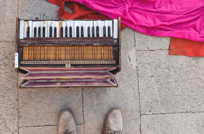 different types of harmonium